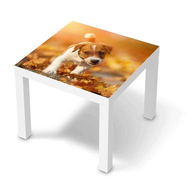 Möbelfolie IKEA Lack Tisch 55x55cm - Jack the Puppy