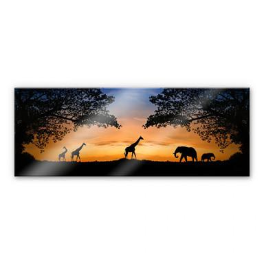 Acrylglasbild African Sunset