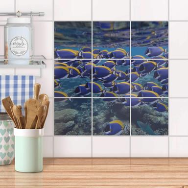 Klebefliesen - Fish swarm