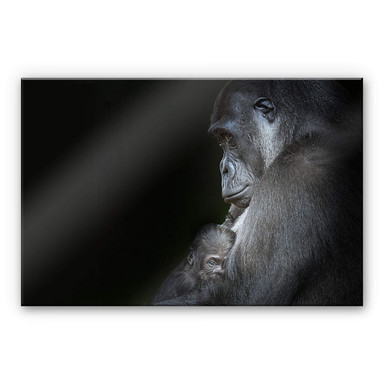 Acrylglasbild Cuadrado - Tenderness