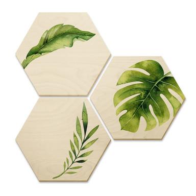 Hexagon - Holz Birke-Furnier - Kvilis -Dschungel 04 (3er Set)