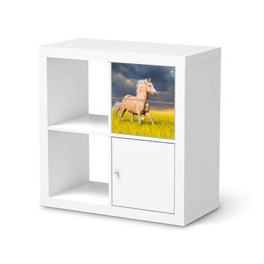 Möbelfolie IKEA IKEA Expedit Regal Schubladen - Wildpferd