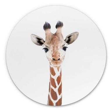 Alu-Dibond Sisi & Seb - Baby Giraffe - Rund