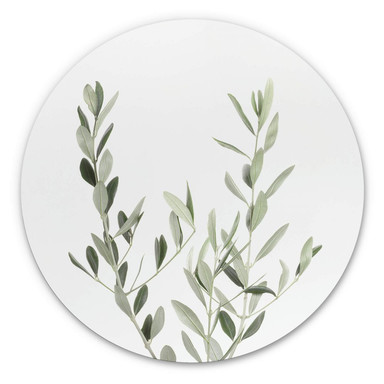Alu-Dibond Sisi & Seb - Olivenzweig - Rund