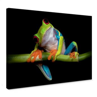 Leinwandbild Valverde - Green Frog