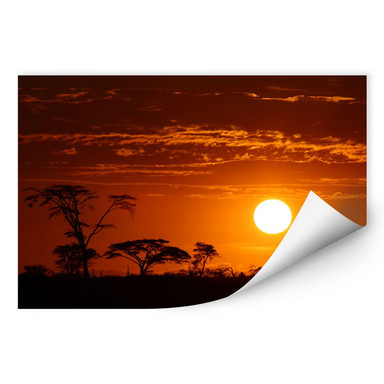 Wallprint Afrikanische Steppe