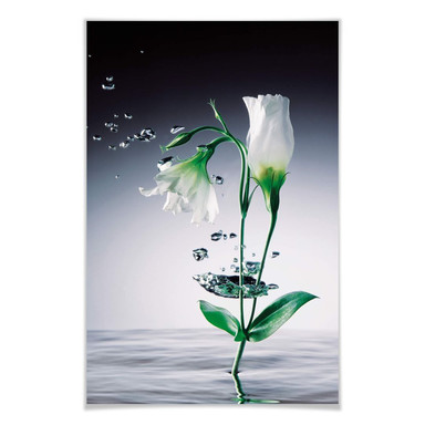 Giant Art® XXL-Poster Crystal Flowers - 115x175cm