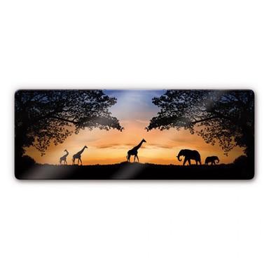 Glasbild African Sunset
