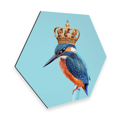 Hexagon - Alu-Dibond Loose - Kingfisher