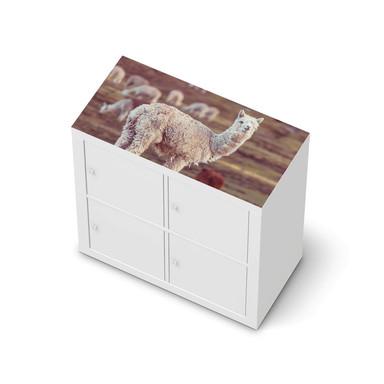 Möbelfolie IKEA Expedit Regal oben - Pako
