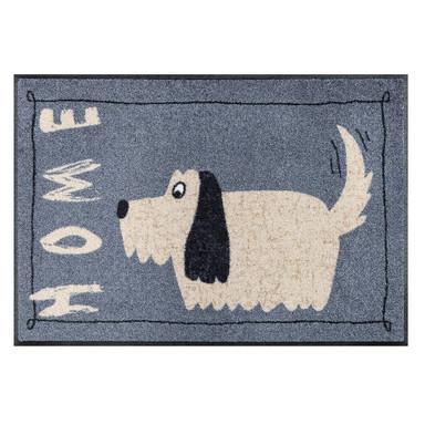 Wash&Dry Fussmatte Doggy Home 50x75cm
