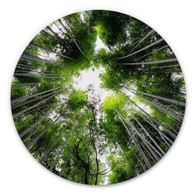 Alu-Dibond Hugonnard - Wald in Japan - Rund