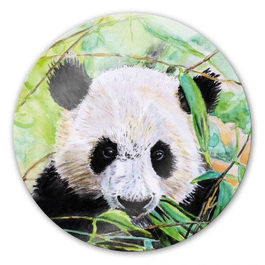 Glasbild Toetzke - Pandabär - rund