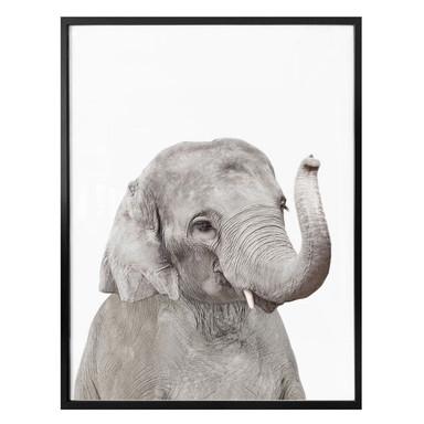 Poster Sisi & Seb - Baby Elefant