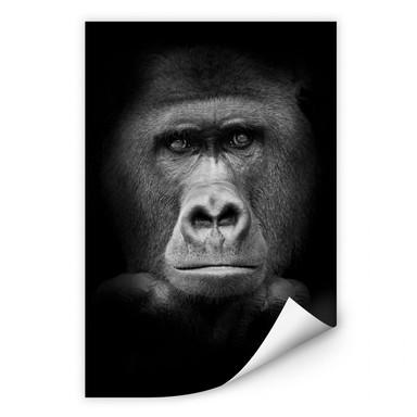 Wallprint Gorilla