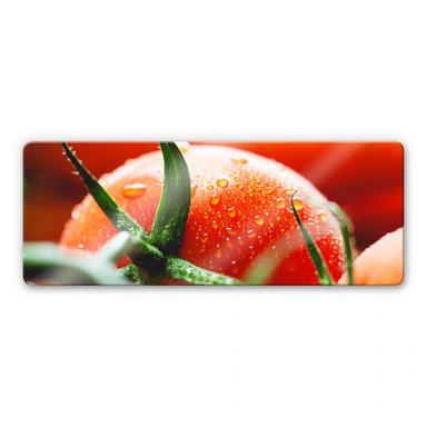 Glasbild Fresh Tomato - Panorama
