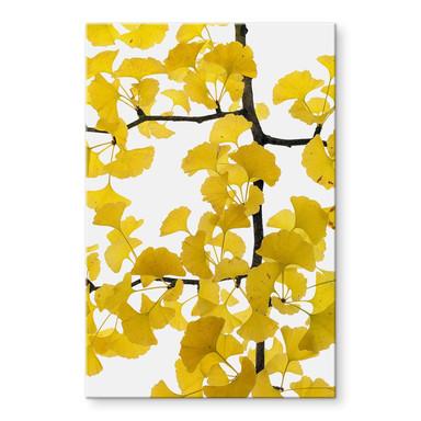 Acrylglasbild Kadam - Flora Ginko