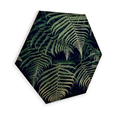 Hexagon - Holz Birke-Furnier - Farn 02