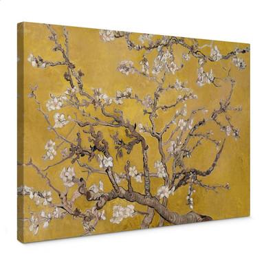 Leinwandbild van Gogh - Mandelblüte Ocker