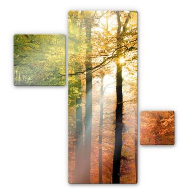 Glasbild Goldener Herbst (3-teilig)