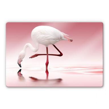 Glasbild Reindl - Pink Flamingo