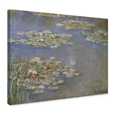Leinwandbild Monet - Seerosen 1905