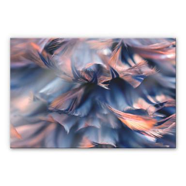 Acrylglasbild Federkleid