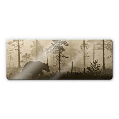 Glasbild Ove Linde - Nebel am Morgen - Panorama