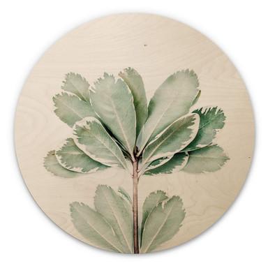 Holzbild Sisi & Seb - Botanik - Rund
