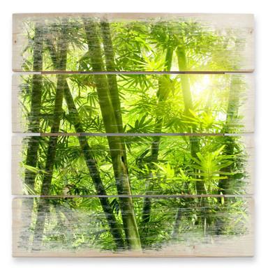 Holzbild Sonnenschein im Bambuswald