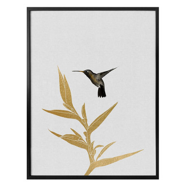 Poster Orara Studio - Hummingbird and Flower - goldene Pflanze
