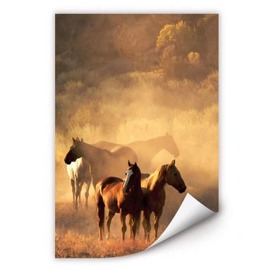 Wallprint Power of Horses
