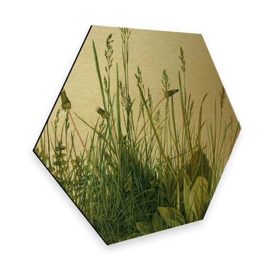 Hexagon - Alu-Dibond Gold - Dürer - Das grosse Rasenstück