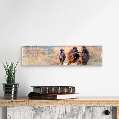 Holzschild Affenbande