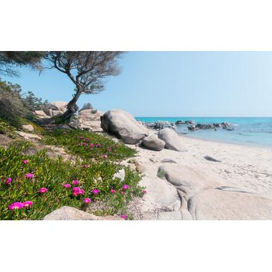 Fototapete Mediterrane Träume