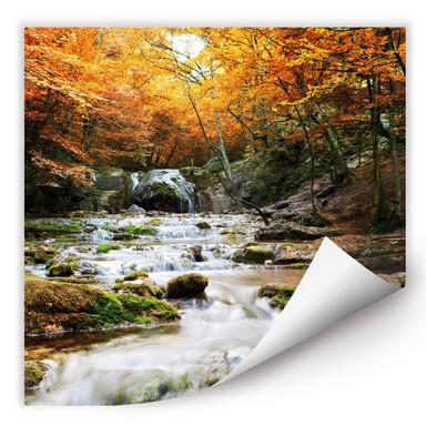 Wallprint Autumn Waterfall