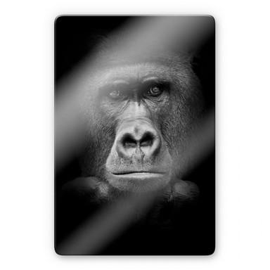 Glasbild Gorilla