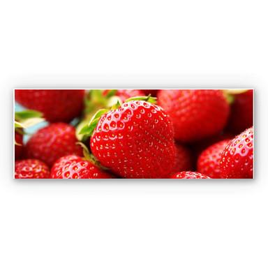 Wandbild Erdbeeren aus dem Garten - Panorama