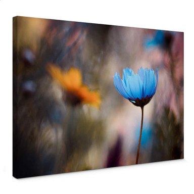 Leinwandbild Bravin - Tanzende Blumen