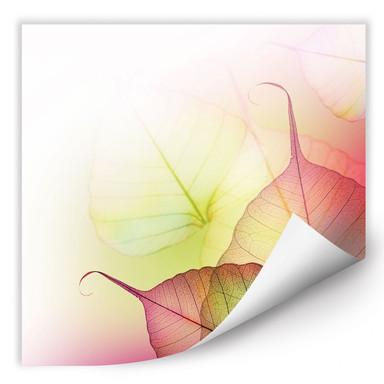 Wallprint Pink Design
