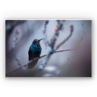 Wandbild Bravien - Electrical Blue