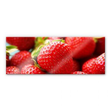 Acrylglasbild Erdbeeren aus dem Garten - Panorama