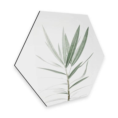 Hexagon - Alu-Dibond Sisi & Seb - Oleander