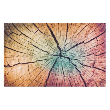 Wash&Dry Decor Fussmatte Wood Land