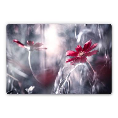 Glasbild Bravin - Blütenrausch