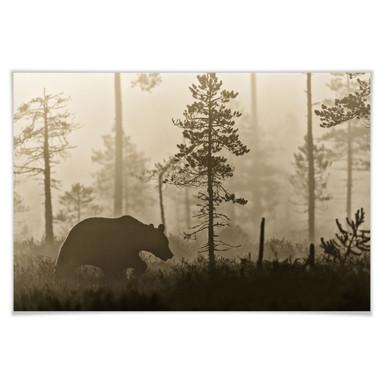 Poster Ove Linde - Nebel am Morgen