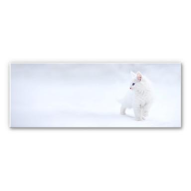 Wandbild Prexus - Weisser als Schnee