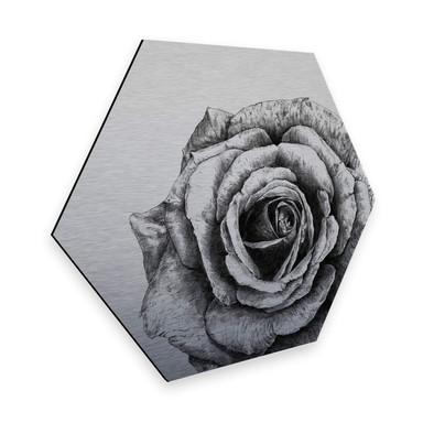 Hexagon - Alu-Dibond Silbereffekt Kools - Rose