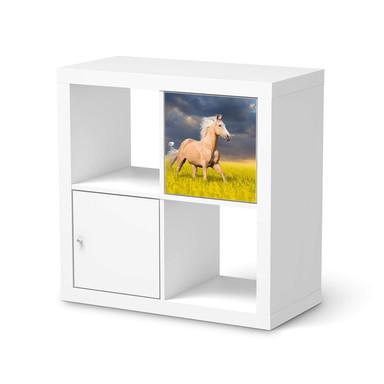 Möbelfolie IKEA Kallax Regal 1 Türe - Wildpferd
