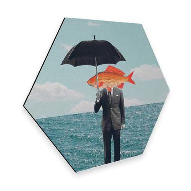 Hexagon - Alu-Dibond Léon - Can't get wet